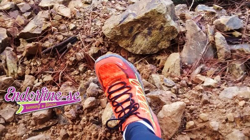 avaliação skechers gobionic trail